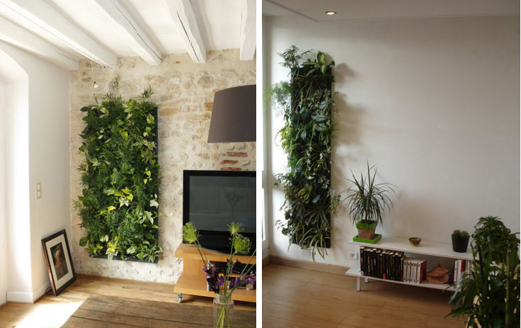 Superior Vertical Garden Can Be Easily Installed, And Can Be Installed Anywhere In  The House. These Plants Are Planted Inside Small Pockets Called Wally  Woolly ...